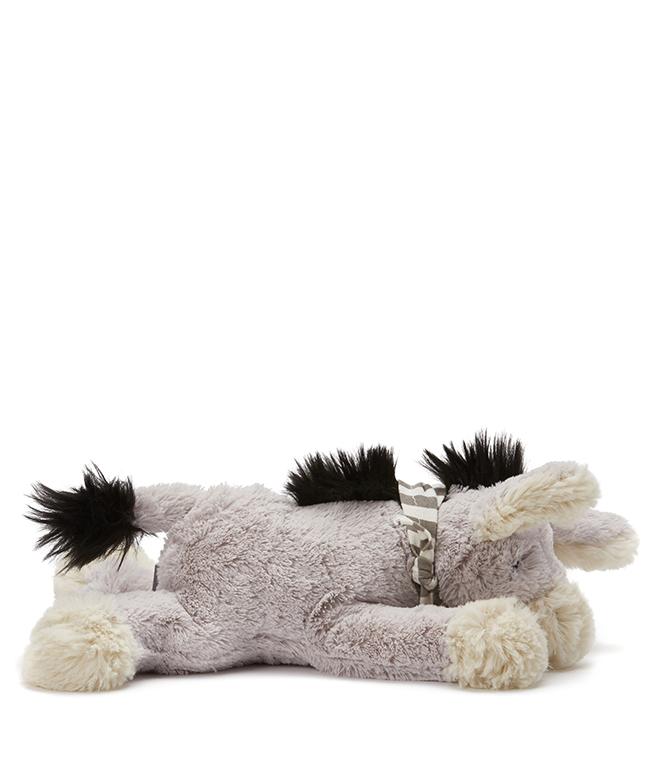 Dexter The Lazy Donkey